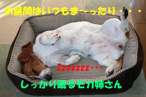 f0121712_15512018.jpg