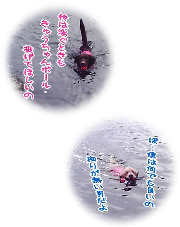 f0109418_146788.jpg