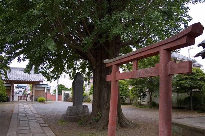f0040525_20104431.jpg
