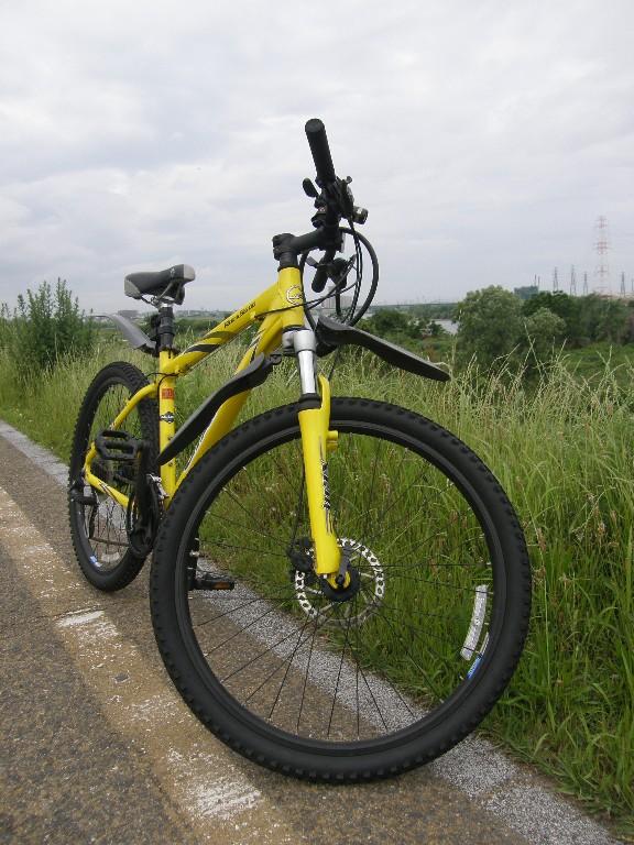 自転車で散歩_f0128542_4352814.jpg