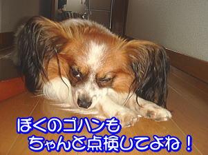 f0011845_14555557.jpg
