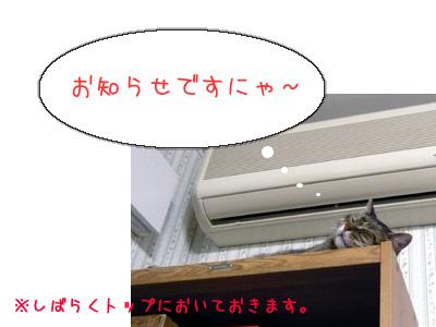 b0058448_19452712.jpg