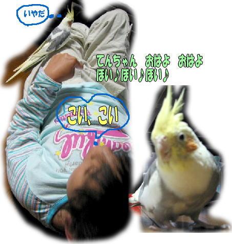 f0082367_22381219.jpg
