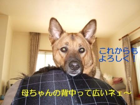 b0087400_23123368.jpg