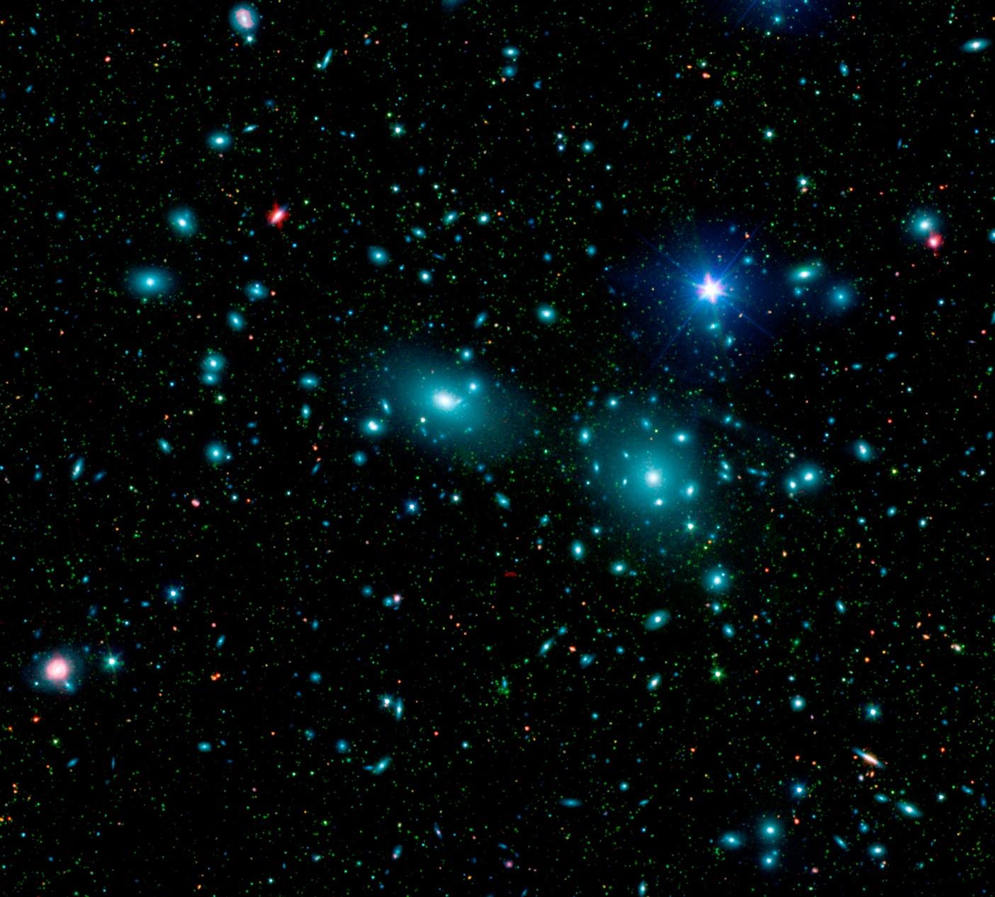 スピッツアー赤外線宇宙望遠鏡が捉えたコマクラスター銀河集団_d0063814_1625336.jpg