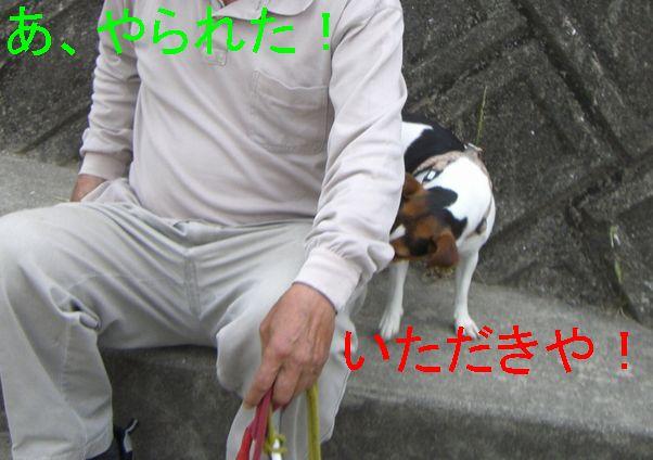 f0053952_1015196.jpg
