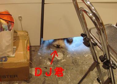 b0091373_2144527.jpg