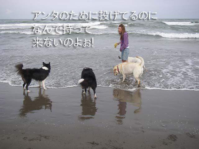 f0114893_95632.jpg
