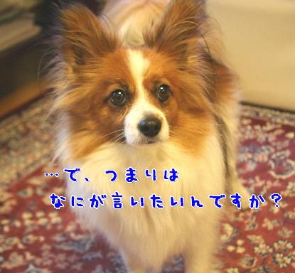 d0013149_9111293.jpg