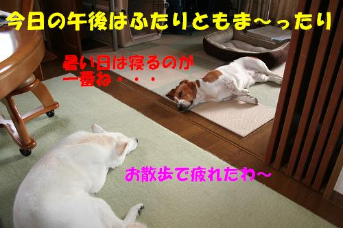 f0121712_16285749.jpg