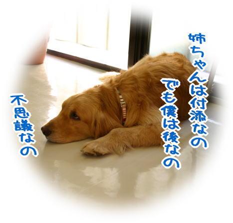 f0109418_10581557.jpg