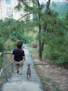 香港旅行記 4 ~ごたはまに会いに~_b0046331_415401.jpg