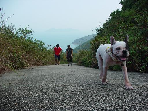 香港旅行記 4 ~ごたはまに会いに~_b0046331_4172920.jpg