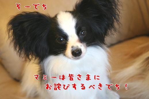 d0013149_7503364.jpg