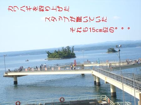 f0040703_11443843.jpg