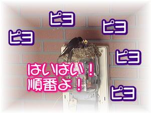 f0011845_23252857.jpg