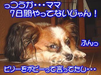 f0011845_2327582.jpg