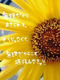 e0121704_1719938.jpg