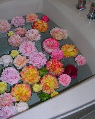 6月10日(日)・・・バラ風呂と、愛ちゃんがモデルに!_f0060461_232288.jpg