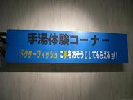 f0103873_21482876.jpg