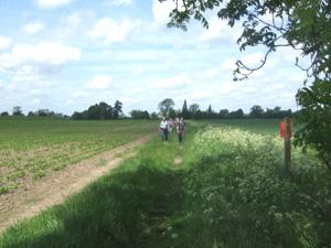 ケンブリッジを歩くチャリティイベント「Oxfam Walk」_e0030586_17302152.jpg