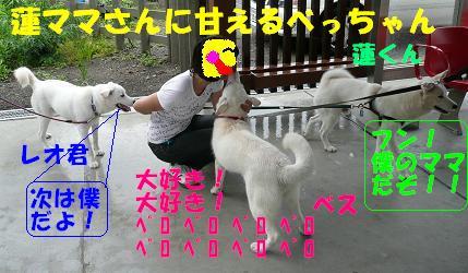 f0121712_17175848.jpg