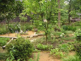 お庭のご紹介_a0077025_13315997.jpg