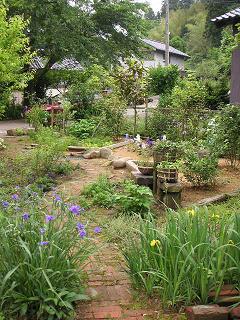 お庭のご紹介_a0077025_13321343.jpg