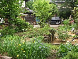 お庭のご紹介_a0077025_13322728.jpg