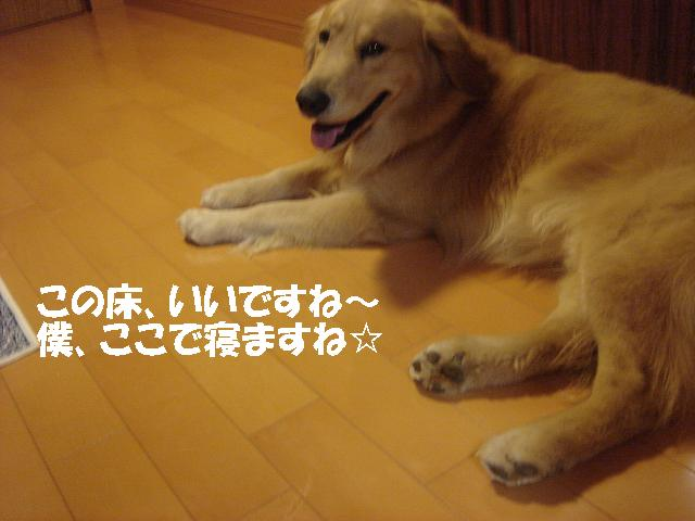 f0114128_11274546.jpg