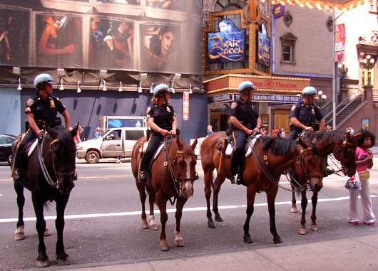 NYPDの騎馬隊とNYFDのカレンダー_b0007805_10434946.jpg