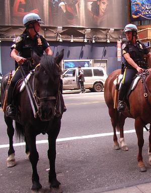 NYPDの騎馬隊とNYFDのカレンダー_b0007805_10505760.jpg