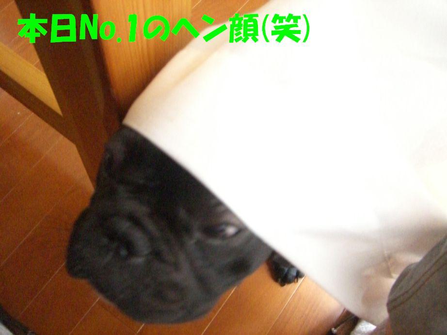c0113109_0192413.jpg