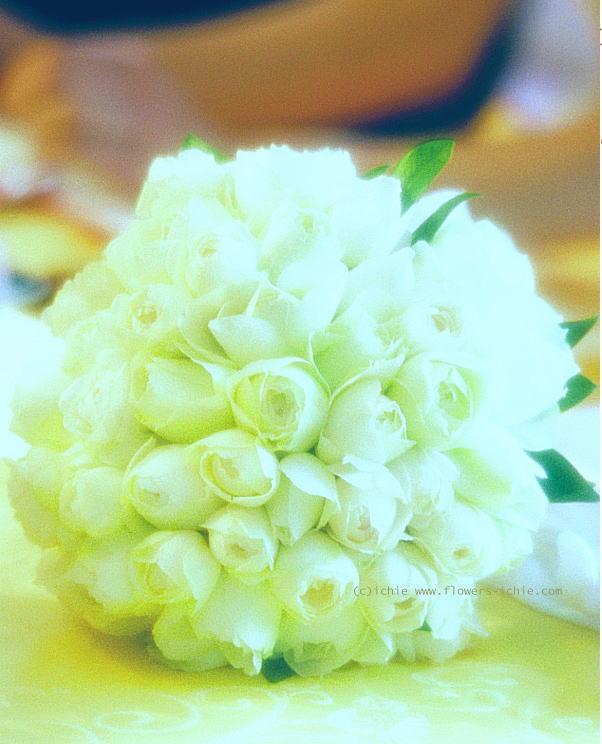 新郎新婦さまからのメール 人を優しくする花を_a0042928_23141256.jpg