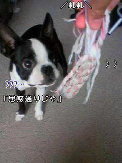 c0110945_0182978.jpg