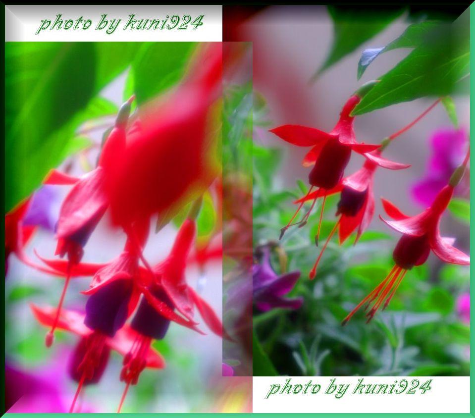 f0131365_14504072.jpg