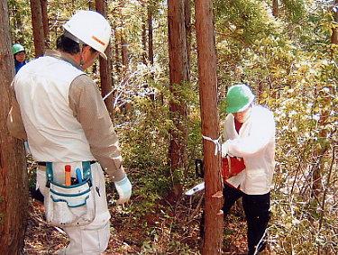 こうち森林救援隊活動報告 【第4回】_a0051612_6382056.jpg