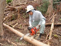 こうち森林救援隊活動報告 【第4回】_a0051612_6404470.jpg