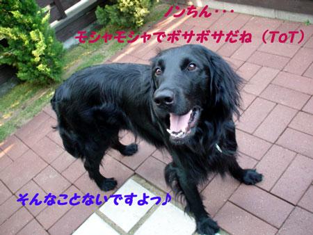 f0018144_13213817.jpg