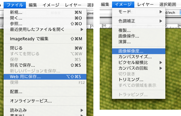 Photoshop (エレメンツ)講座 ブログ用に写真をリサイズする方法_a0003650_10584761.jpg