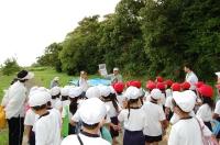 箱作小学校2年学習サポート in  自然海岸_c0108460_22354727.jpg