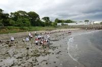 箱作小学校2年学習サポート in  自然海岸_c0108460_22383772.jpg