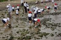 箱作小学校2年学習サポート in  自然海岸_c0108460_2311631.jpg