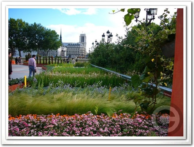 ■パリ市庁舎前のガーデン(JARDINS)_a0008105_196382.jpg