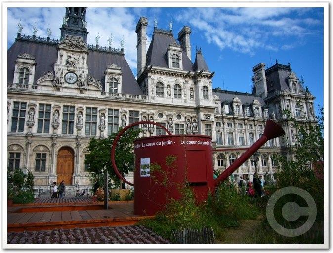 ■パリ市庁舎前のガーデン(JARDINS)_a0008105_19885.jpg