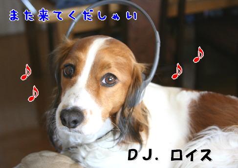 d0013149_0415380.jpg