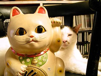 新しい招き猫_a0028451_17593840.jpg