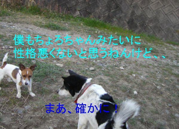 f0053952_10252938.jpg