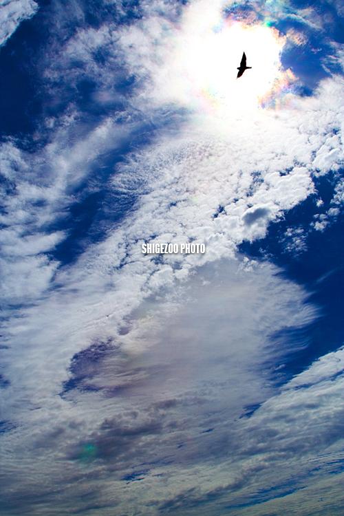 c0114161_0105210.jpg