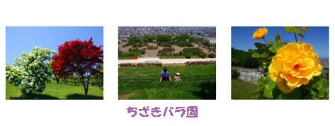 f0126363_15434410.jpg